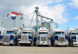 Modern Fleet Of Trucks
